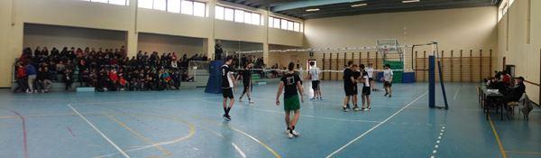 Palestra Volley